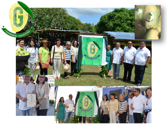 Photo shows Leny B. Raz, director of the Bureau of Trademarks, awarding the Certificate of Registration to Guimaras governor Samuel T. Gumarin during the unveiling of Guimaras Mango Quality Seal on May 11 at the Provincial Capitol grounds in Jordan, Guimaras